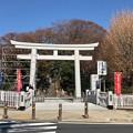 写真: 白幡神社(藤沢市)御典橋・大鳥居