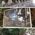 Photos: 白幡神社(藤沢市)江ノ島弁財天道標・庚申塔群