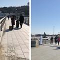 Photos: 江の島大橋(弁天橋)実はココカラ