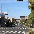 写真: 若宮大路 鶴岡八幡宮一の鳥居(鎌倉市)