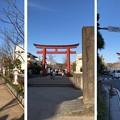 Photos: 鶴岡八幡宮(鎌倉市)二の鳥居・段葛
