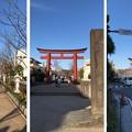 鶴岡八幡宮(鎌倉市)二の鳥居・段葛