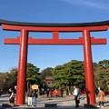 鶴岡八幡宮(鎌倉市)三の鳥居