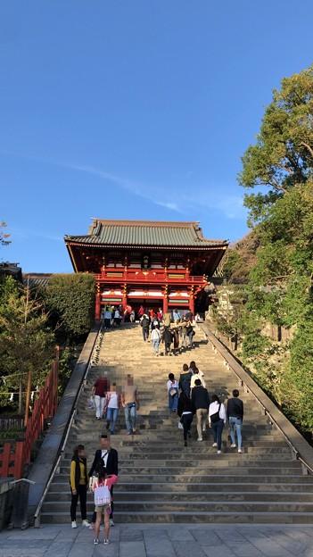鶴岡八幡宮(鎌倉市)大石段・社殿