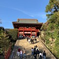 Photos: 鶴岡八幡宮(鎌倉市)大石段・社殿