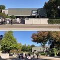 国立西洋美術館(台東区上野公園)