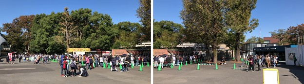 上野動物園(台東区上野公園)