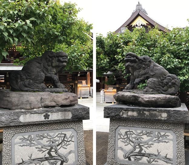 湯島天満宮(文京区)狛犬