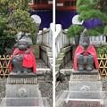 Photos: 山王日枝神社(千代田区永田町)神猿像