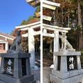 三峯神社(秩父市)神使