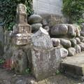 Photos: 伝 曽我氏館跡(小田原市)縄張北面