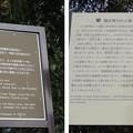 宗我神社(小田原市)