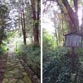 紹太寺(小田原市)旧参道・石地蔵跡