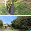 Photos: 宇佐美城(伊東市)堀跡?