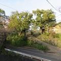 写真: 伝 伊東家屋敷跡(伊東市営 物見塚公園)