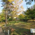 Photos: 伝 伊東家屋敷跡(伊東市営 物見塚公園)