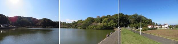 韮山城(伊豆の国市)城池