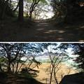Photos: 韮山城(伊豆の国市)三の丸・土塁・虎口