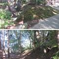 Photos: 韮山城(伊豆の国市)権現郭/熊野神社