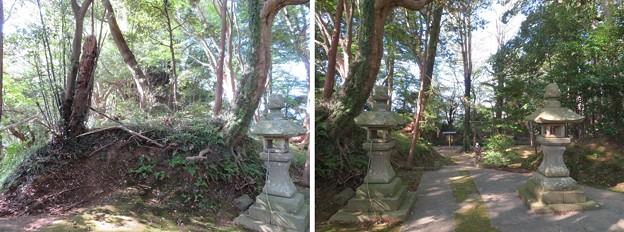 韮山城(伊豆の国市)権現郭/熊野神社