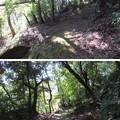 Photos: 韮山城(伊豆の国市)堀切・腰郭