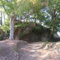 Photos: 韮山城(伊豆の国市)二の丸より本丸
