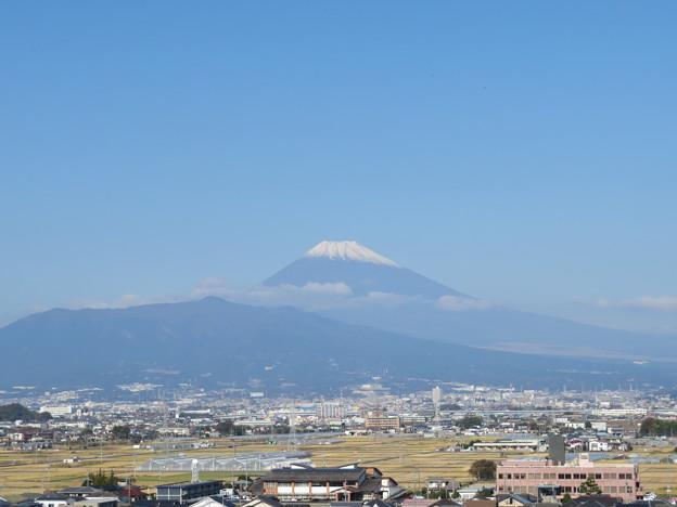 韮山城(伊豆の国市)より富士山