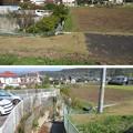 写真: 韮山城(伊豆の国市)城池北・水堀東