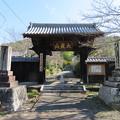 Photos: 本立寺(伊豆の国市)山門
