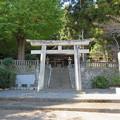 写真: 守山八幡宮(伊豆の国市)鳥居