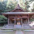 写真: 守山八幡宮(伊豆の国市)拝殿