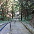 Photos: 守山八幡宮(伊豆の国市)|||||||/(° × °)\|||||||