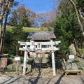 Photos: 興国寺城(沼津市)穂見神社