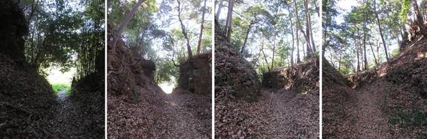Photos: 興国寺城(沼津市)空堀