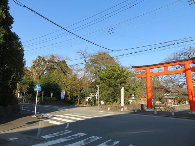 富士山本宮浅間大社(富士宮市)富士山