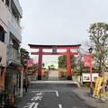 Photos: 18.12.03.亀戸天神社(江東区)