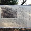 Photos: 久伊豆神社(越谷市)