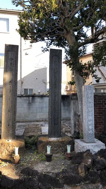 天龍院(台東区谷中)伊東玄朴墓