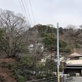 Photos: 杉本城/杉本寺(鎌倉市)