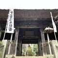 杉本城/杉本寺(鎌倉市)山門(仁王門)