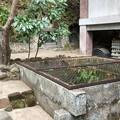 杉本城/杉本寺(鎌倉市)井戸・やぐら