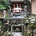 Photos: 杉本城/杉本寺(鎌倉市)大蔵弁財天