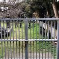 光明寺(鎌倉市)内藤家墓所