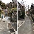 Photos: 住吉城(逗子市)