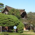 Photos: 總持寺 向唐門(横浜市鶴見区)