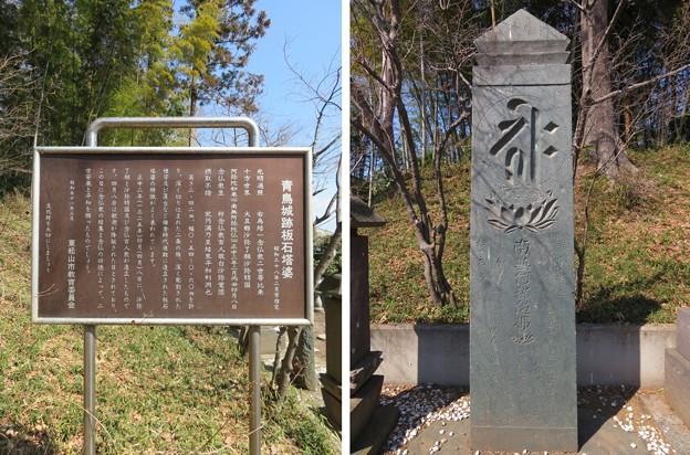 青鳥城(東松山市)正中期 板碑