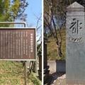 Photos: 青鳥城(東松山市)正中期 板碑