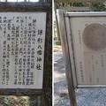 Photos: 鎌形八幡神社(嵐山町)