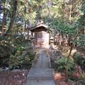 鎌形八幡神社(嵐山町)弁財天?