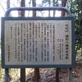 鎌形八幡神社(嵐山町)本殿